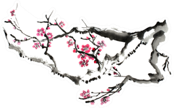 Original Art, Watercolor Painting Of Plum Tree Branch In Bloom Sticker