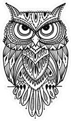 Ornate  Zenart Owl Sticker