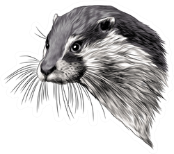 Otter Sketch Head Sticker