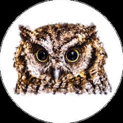 Owl Head Painting Sticker
