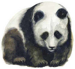 Panda Bear Watercolour Hand Drawn Stickers