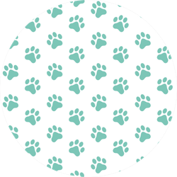 Pattern Of Animal Paw Print Mint Color Sticker