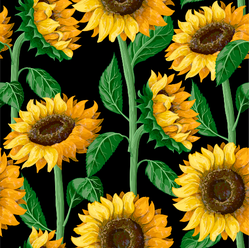Pattern With Sunflowers On Black Sticker