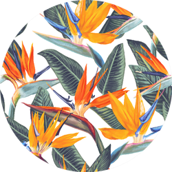 Pattern With Tropical Flowers Bird Of Paradise Sticker