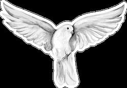 Peace Bird, Dove Watercolor Drawing Sticker