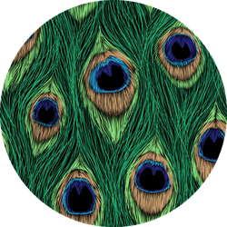 Peacock Feathers Close Detailed Pattern Sticker
