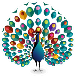 Peacock Illustration Sticker
