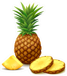 Pineapple With Round Slices Sticker