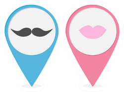 Pink and Blue Male and Female Symbol Stickers