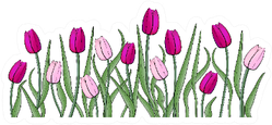 Pink And Violet Tulips With Stems Sticker