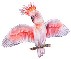 Pink Cockatoo Isolated On White Background Watercolor Sticker