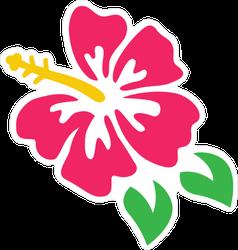 Pink Hibiscus Graphic Sticker