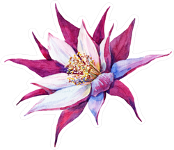 Pink Watercolor Cactus Flower Sticker