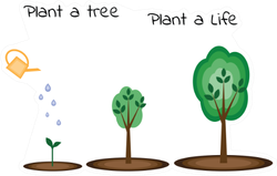 Plant A Tree Plant A Life Sticker