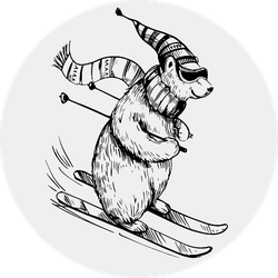 Polar Bear Skiing Hand Drawn Illustration Sticker
