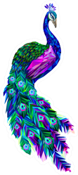 Polygonal Peacock Illustration Tropical Bird Sticker