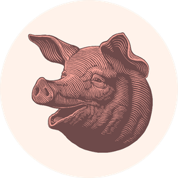 Pork Head. Hand Drawn Engraving Sticker