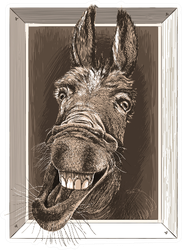 Portrait-cartoon Of Crazy Donkey In A Wooden Frame Sticker