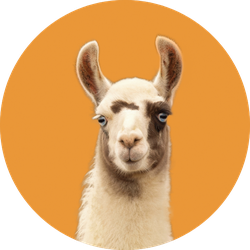 Portrait Of A Llama Isolated On Orange Sticker