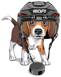 Portrait Of A Puppy Beagle In A Ice Hockey Helmet Sticker