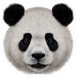Portrait Of A Realistic Panda Bear Sticker