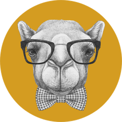 Portrait Of Camel With Glasses And Bow Tie Yellow Sticker