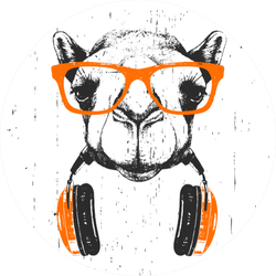 Portrait Of Camel With Glasses And Headphones Sticker