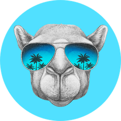 Portrait Of Camel With Mirror Glasses Blue Sticker