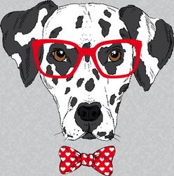 Portrait Of Dalmatian Sticker