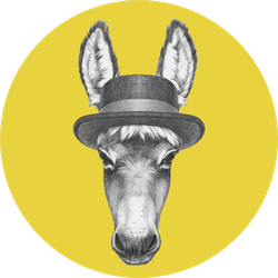 Portrait Of Donkey With Hat On Yellow Sticker
