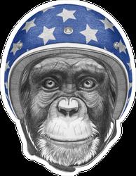 Portrait Of Monkey With Helmet Sticker