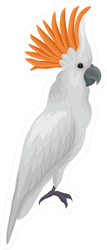 Portrait Of Sulphur-crested Cockatoo Exotic Sticker
