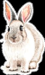 Portrait Rabbit Watercolor Hand Drawn Sticker