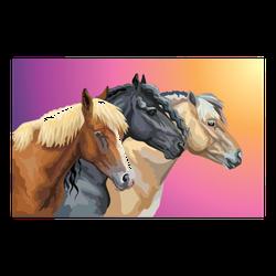 Portraits Of Horses Breeds On Rainbow Sticker