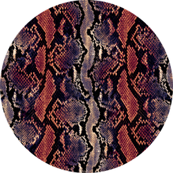Python Skin, Snake Pattern, Animal Skin Sticker