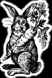 Rabbit Holding Carrot - Retro Sticker
