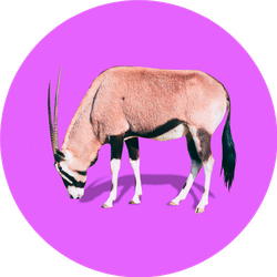 Realistic Antelope On Bright Purple Background Sticker