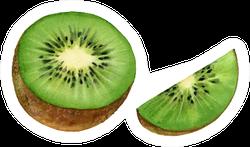 Realistic Botanical Watercolor Kiwi Sticker