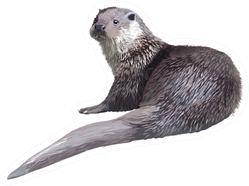 Realistic Detailed Illustration - Otter Sticker