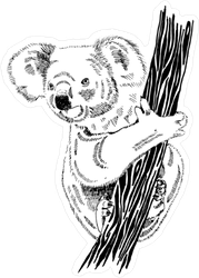 Realistic Koala Illustration Sticker