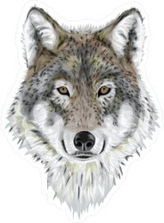 Realistic Wolf Sticker