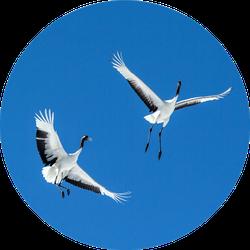 Red Crowned Cranes (grus Japonensis) In Flight On Blue Sky Sticker