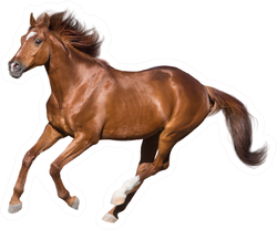 Red Horse Run Gallop Isolated On White Sticker