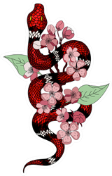 Red Snake And Cherry Flower Spring Season Sticker