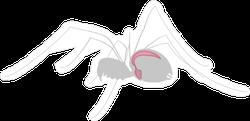 Respiratory System Of A Spider Sticker