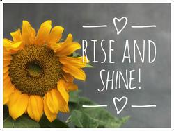 Rise And Shine Sunflower Sticker