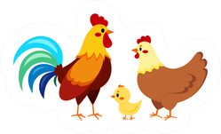 Rooster Cock With Hen And Chick Chicken Family Illustration Sticker