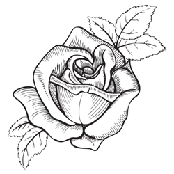 Rose Flower Black And White Tattoo Sticker