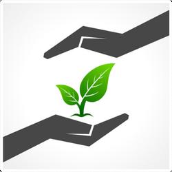 Save Nature Two Hands Nurturing Plant Sticker