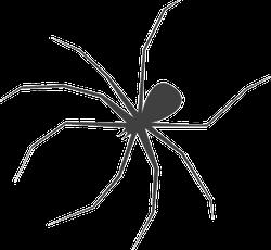 Scary Long Leg Spider Sticker